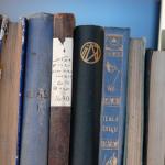 Skaitmeninamos knygos