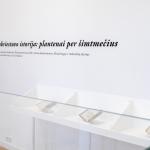 Parodos eksponatai